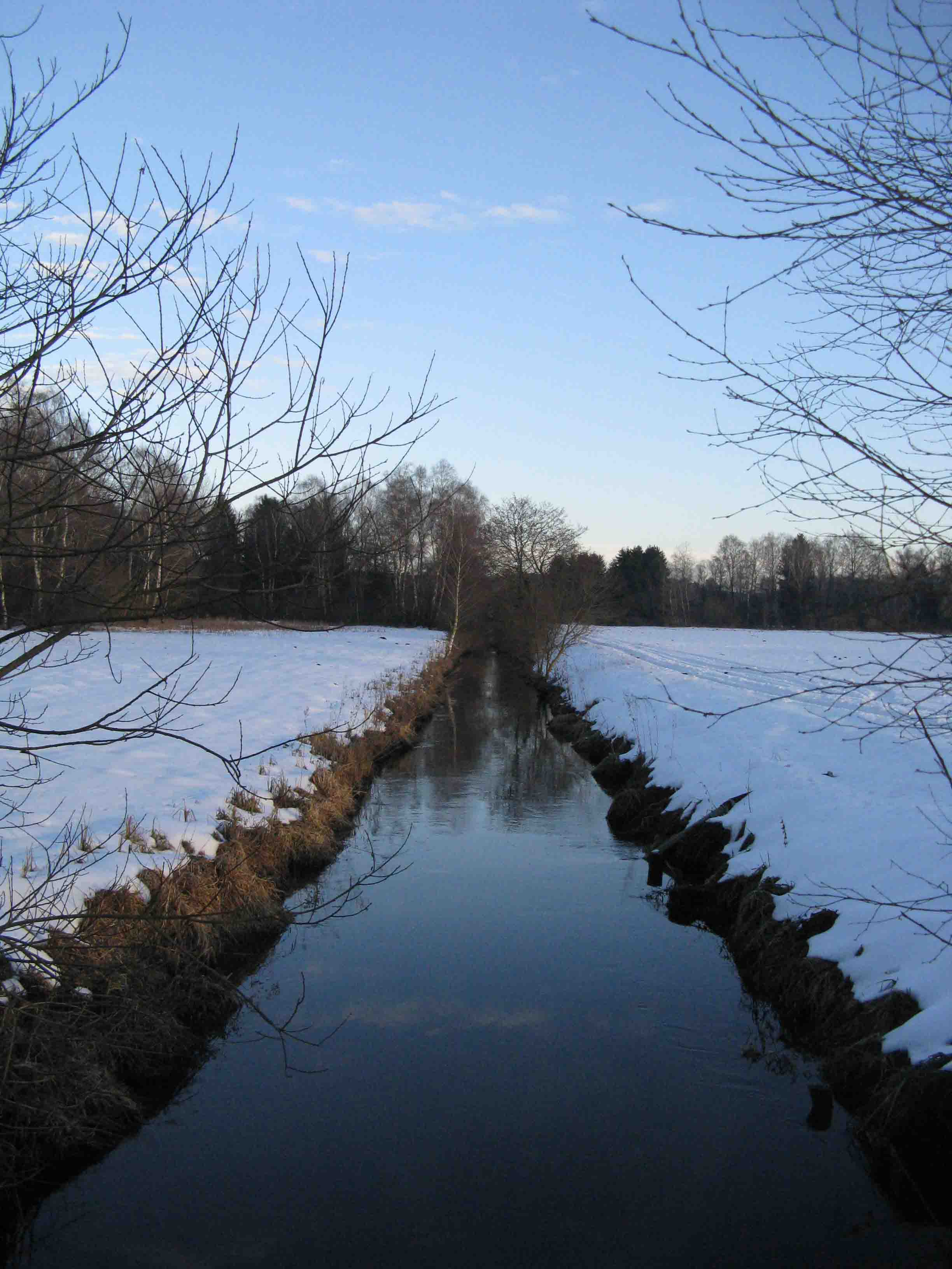Brucker Moor im Winter 2