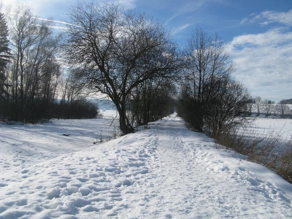 Bahndamm im Winter