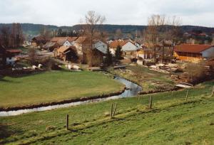 GN220-08 Grieslmühle v Ost 1995 (Large)