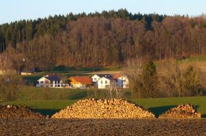 GS294-09 Holz v d Hüttn 2013