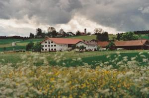 GW310-08 Reinsdorf v Ost 1999 (Large)