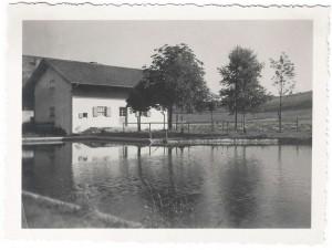 k-GS646-04 Schwimmbd Wiesm