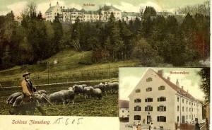 k-uZi00-16 Zinn v Gl u Schafe ~1905