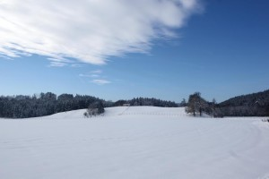 Reisenthal Winter-s