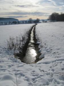 Brucker Moor 1