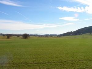Brucker Moor