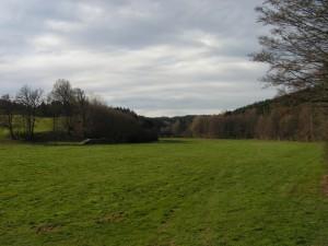 Reisenthal